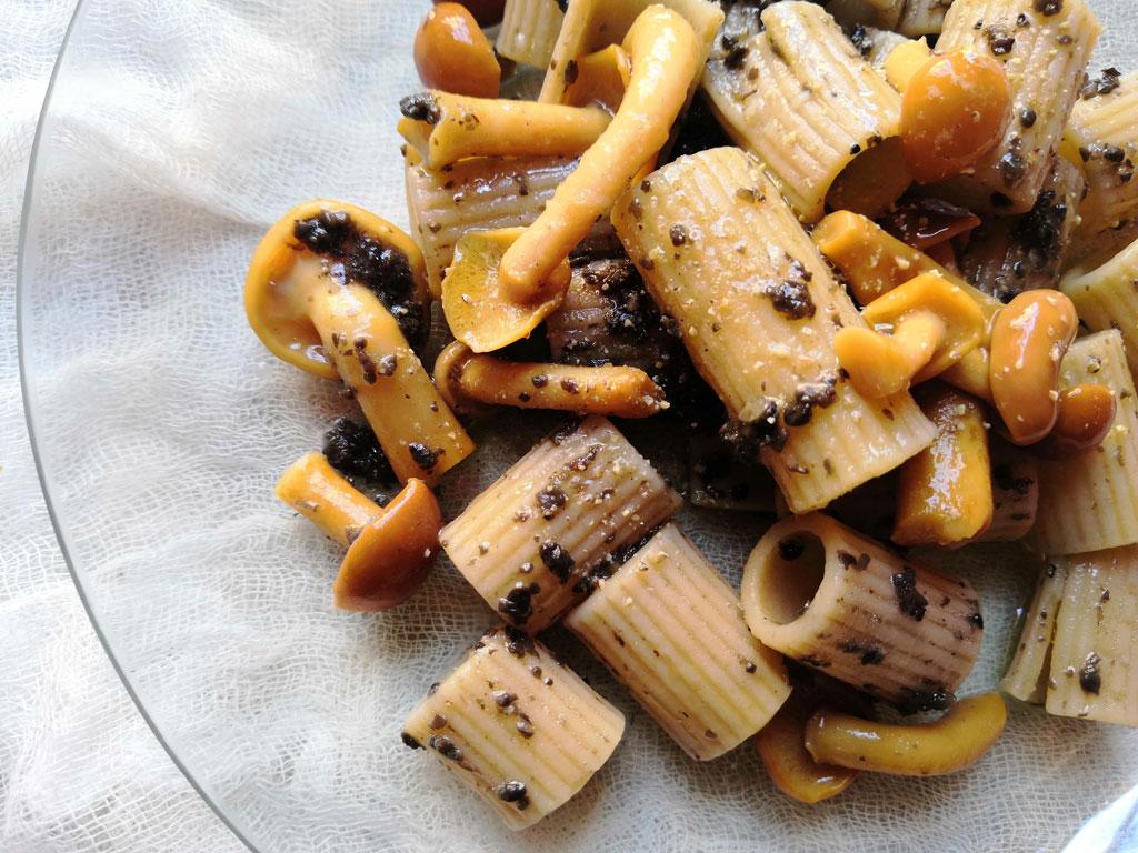 A dish of Molisana Pasta with Mushroom Sauce